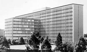 menzies building
