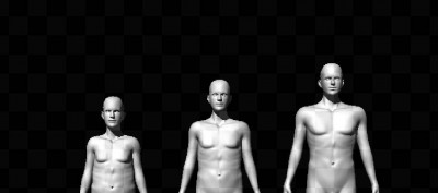 Figures representing the must extreme height, shoulder, hip and penis in comparison to the central most trait values