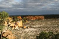 Field Site, Sandstone, WA. Image: Professor Steven Chown.