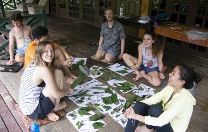 BIO3820 Field Trip to Borneo. Image: Mr Bruce Weir.