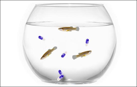Antidepressant-with-fish