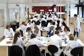 Genetics lab class