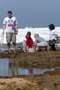 students studying coastline