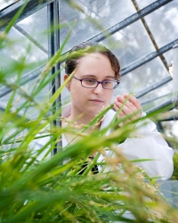 Student examining plant