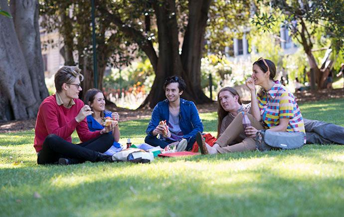 Students having a picnic