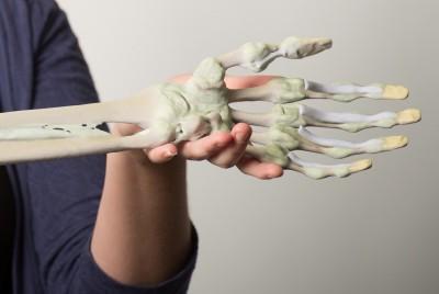3D printed anatomy
